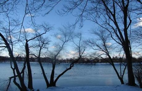 A still and icy Jamaica Pond.